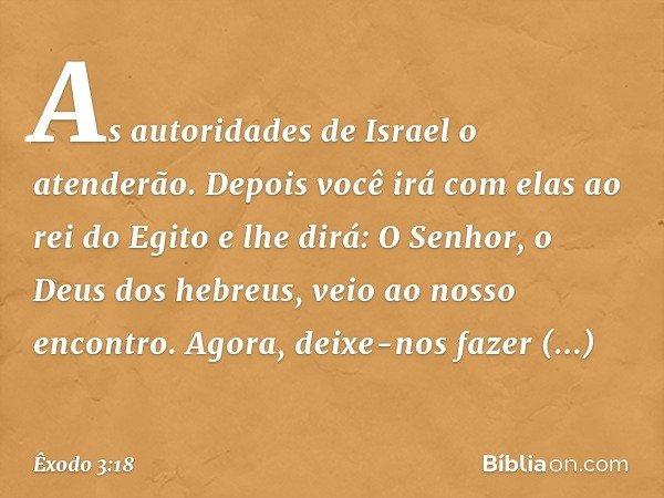 """""""As autoridades de Israel o atenderão. Depois você irá com elas ao rei do Egito e lhe dirá: O Senhor, o Deus dos hebreus, veio ao nosso encontro. Agora, deixe-n"""