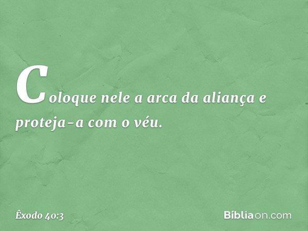 Coloque nele a arca da aliança e proteja-a com o véu. -- Êxodo 40:3