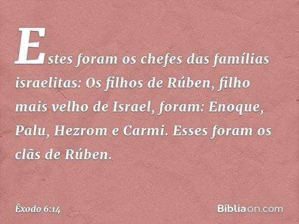 Estes foram os chefes das famílias israelitas: Os filhos de Rúben, filho mais velho de Israel, foram: Enoque, Palu, Hezrom e Carmi. Esses foram os clãs de Rúben