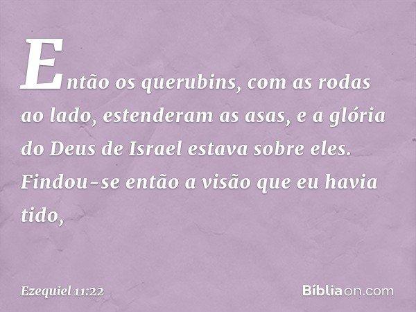 Então os querubins, com as rodas ao lado, estenderam as asas, e a glória do Deus de Israel estava sobre eles. Findou-se então a visão que eu havia tido, -- Ezeq