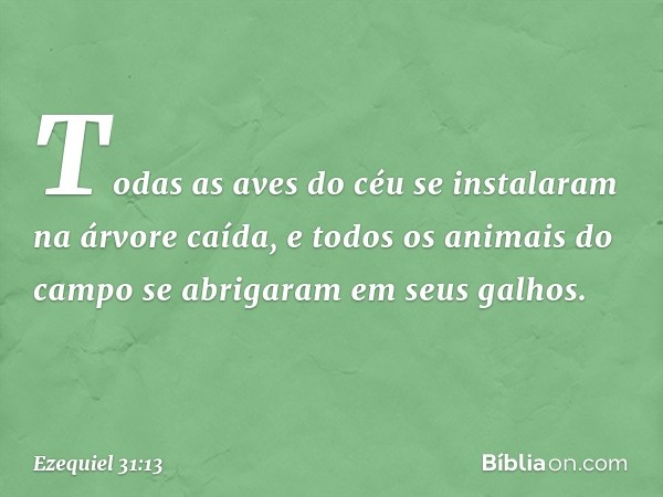 Todas as aves do céu se instalaram na árvore caída, e todos os animais do campo se abrigaram em seus galhos. -- Ezequiel 31:13