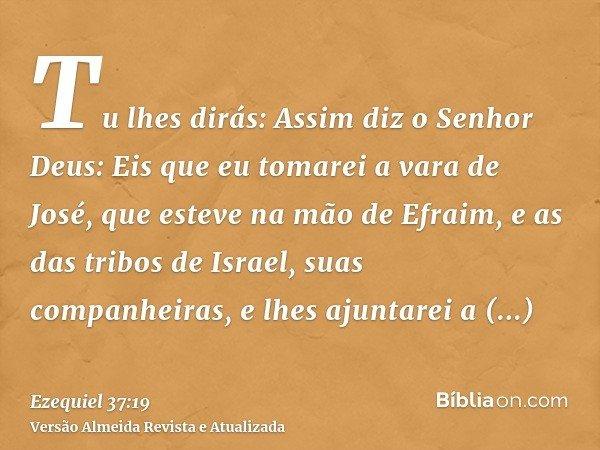 Tu lhes dirás: Assim diz o Senhor Deus: Eis que eu tomarei a vara de José, que esteve na mão de Efraim, e as das tribos de Israel, suas companheiras, e lhes aju