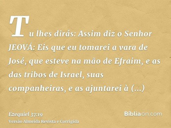 Tu lhes dirás: Assim diz o Senhor JEOVÁ: Eis que eu tomarei a vara de José, que esteve na mão de Efraim, e as das tribos de Israel, suas companheiras, e as ajun