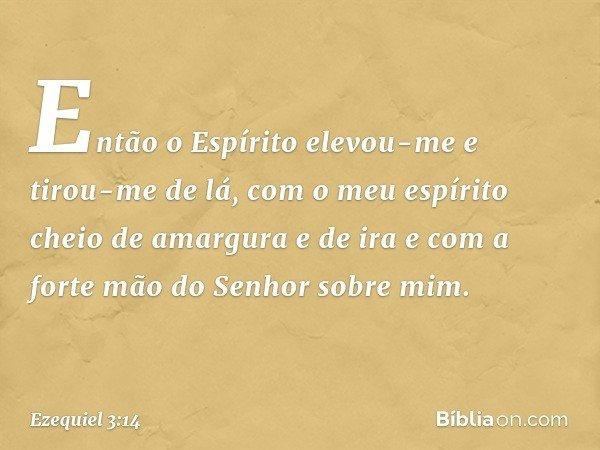 Então o Espírito elevou-me e tirou-me de lá, com o meu espírito cheio de amargura e de ira e com a forte mão do Senhor sobre mim. -- Ezequiel 3:14