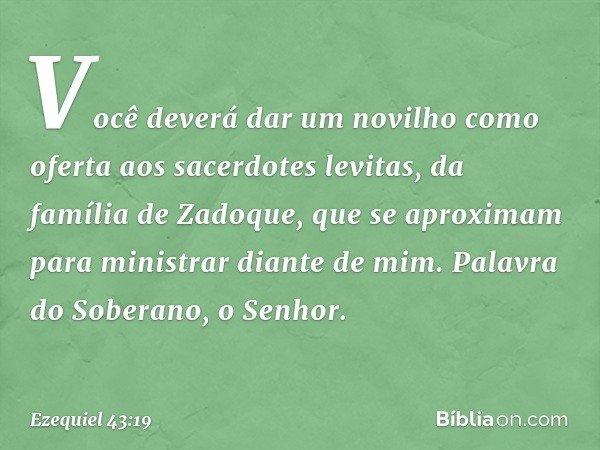 Você deverá dar um novilho como oferta aos sacerdotes levitas, da família de Zadoque, que se aproximam para ministrar diante de mim. Palavra do Soberano, o Sen