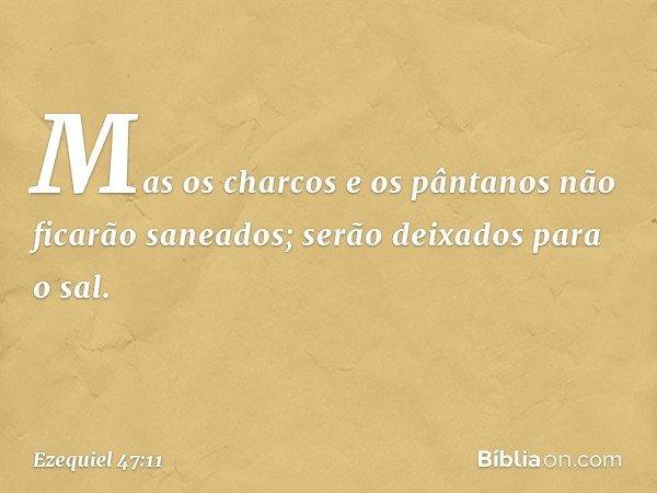 Mas os charcos e os pântanos não ficarão saneados; serão deixados para o sal. -- Ezequiel 47:11