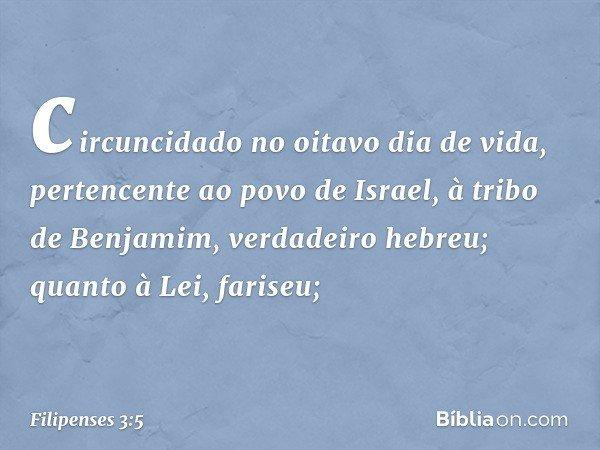 circuncidado no oitavo dia de vida, pertencente ao povo de Israel, à tribo de Benjamim, verdadeiro hebreu; quanto à Lei, fariseu; -- Filipenses 3:5