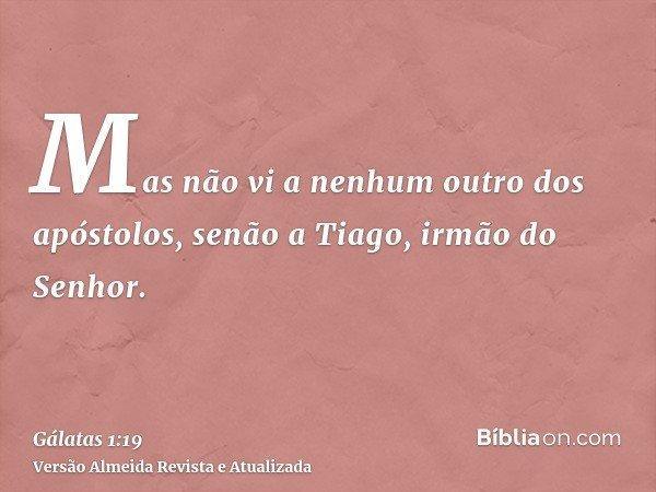 Mas não vi a nenhum outro dos apóstolos, senão a Tiago, irmão do Senhor.