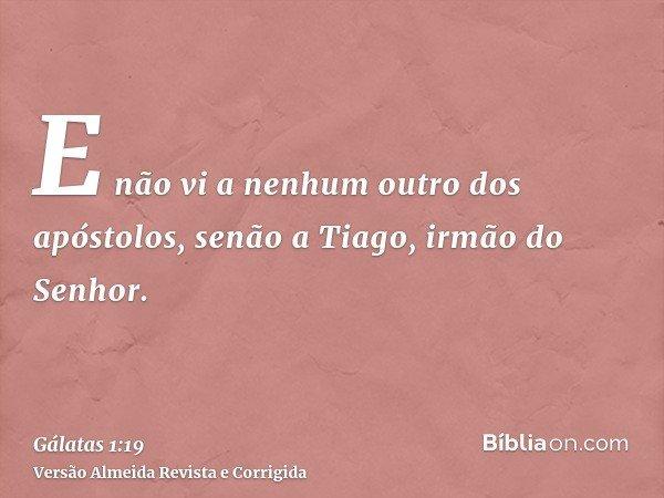 E não vi a nenhum outro dos apóstolos, senão a Tiago, irmão do Senhor.