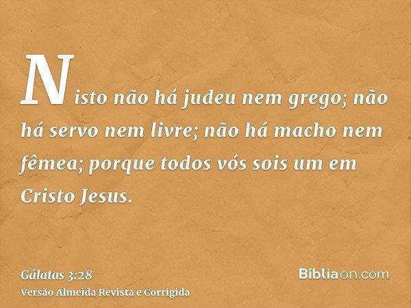 Nisto não há judeu nem grego; não há servo nem livre; não há macho nem fêmea; porque todos vós sois um em Cristo Jesus.