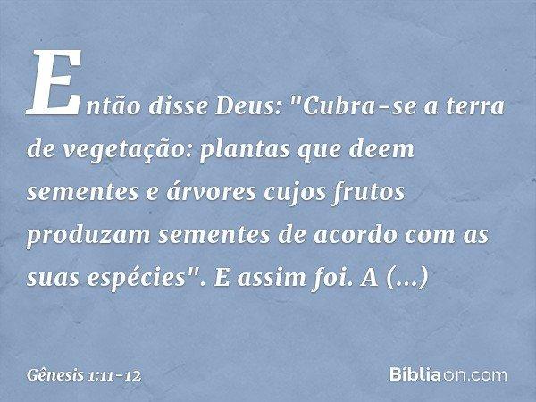 """Então disse Deus: """"Cubra-se a terra de vegetação: plantas que deem sementes e árvores cujos frutos produzam sementes de acordo com as suas espécies"""". E assim"""
