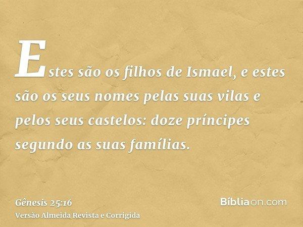 Estes são os filhos de Ismael, e estes são os seus nomes pelas suas vilas e pelos seus castelos: doze príncipes segundo as suas famílias.
