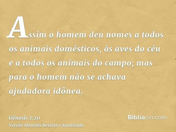 Assim o homem deu nomes a todos os animais domésticos, às aves do céu e a todos os animais do campo; mas para o homem não se achava ajudadora idônea.