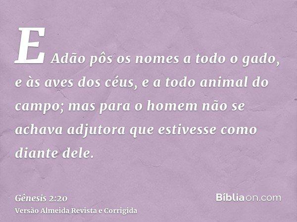E Adão pôs os nomes a todo o gado, e às aves dos céus, e a todo animal do campo; mas para o homem não se achava adjutora que estivesse como diante dele.