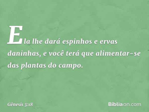 Ela lhe dará espinhos e ervas daninhas, e você terá que alimentar-se das plantas do campo. -- Gênesis 3:18