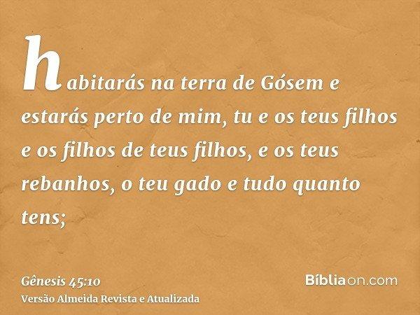 habitarás na terra de Gósem e estarás perto de mim, tu e os teus filhos e os filhos de teus filhos, e os teus rebanhos, o teu gado e tudo quanto tens;