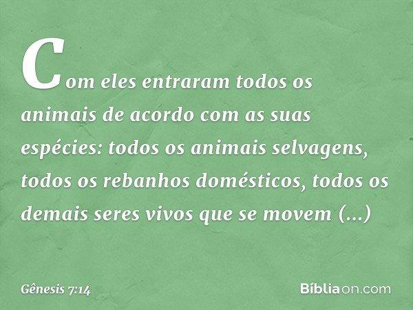 Com eles entraram todos os animais de acordo com as suas espécies: todos os animais selvagens, todos os rebanhos domésticos, todos os demais seres vivos que se