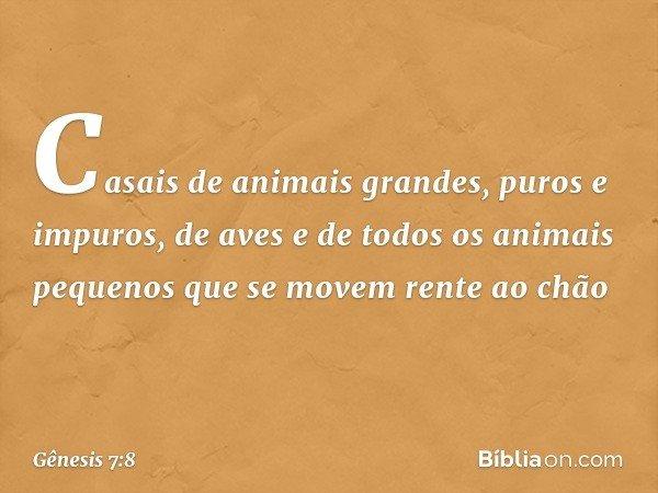 Casais de animais grandes, puros e impuros, de aves e de todos os animais pequenos que se movem rente ao chão -- Gênesis 7:8