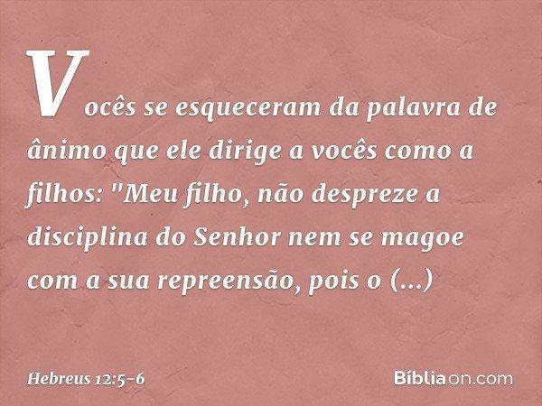 """Vocês se esqueceram da palavra de ânimo que ele dirige a vocês como a filhos: """"Meu filho, não despreze a disciplina do Senhor nem se magoe com a sua repreensão,"""
