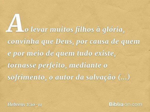 Ao levar muitos filhos à glória, convinha que Deus, por causa de quem e por meio de quem tudo existe, tornasse perfeito, mediante o sofrimento, o autor da salva