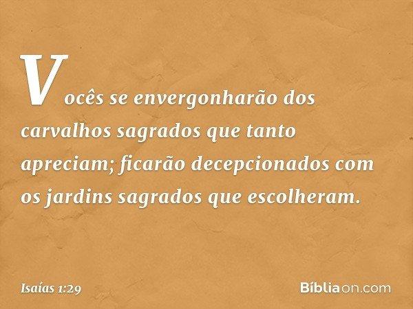 """""""Vocês se envergonharão dos carvalhos sagrados que tanto apreciam; ficarão decepcionados com os jardins sagrados que escolheram. -- Isaías 1:29"""