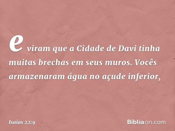 e viram que a Cidade de Davi tinha muitas brechas em seus muros. Vocês armazenaram água no açude inferior, -- Isaías 22:9