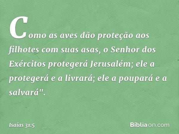 """Como as aves dão proteção aos filhotes com suas asas, o Senhor dos Exércitos protegerá Jerusalém; ele a protegerá e a livrará; ele a poupará e a salvará"""". -- Is"""