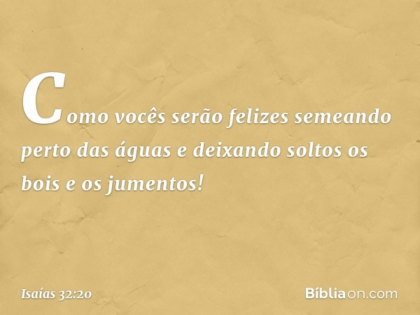 Como vocês serão felizes semeando perto das águas e deixando soltos os bois e os jumentos! -- Isaías 32:20