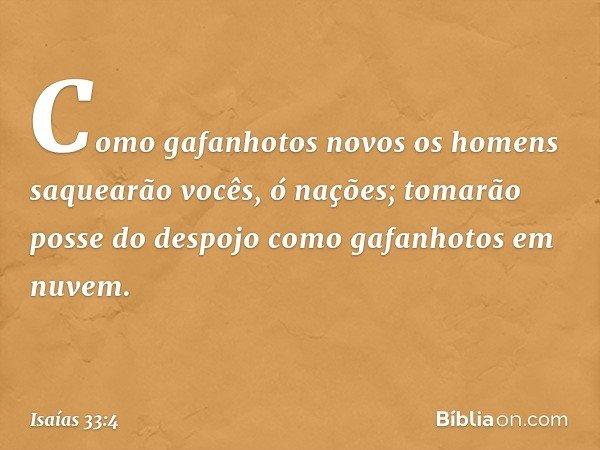 Como gafanhotos novos os homens saquearão vocês, ó nações; tomarão posse do despojo como gafanhotos em nuvem. -- Isaías 33:4