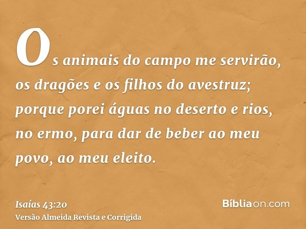 Os animais do campo me servirão, os dragões e os filhos do avestruz; porque porei águas no deserto e rios, no ermo, para dar de beber ao meu povo, ao meu eleito