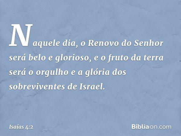 Naquele dia, o Renovo do Senhor será belo e glorioso, e o fruto da terra será o orgulho e a glória dos sobreviventes de Israel. -- Isaías 4:2