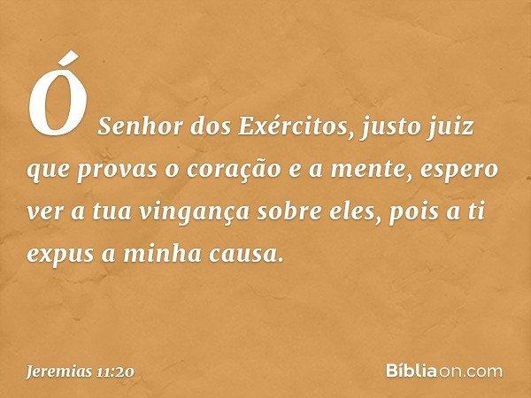 Ó Senhor dos Exércitos, justo juiz que provas o coração e a mente, espero ver a tua vingança sobre eles, pois a ti expus a minha causa. -- Jeremias 11:20