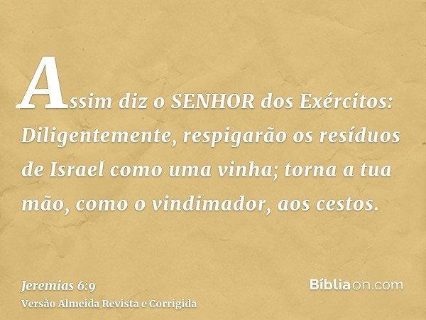 Assim diz o SENHOR dos Exércitos: Diligentemente, respigarão os resíduos de Israel como uma vinha; torna a tua mão, como o vindimador, aos cestos.