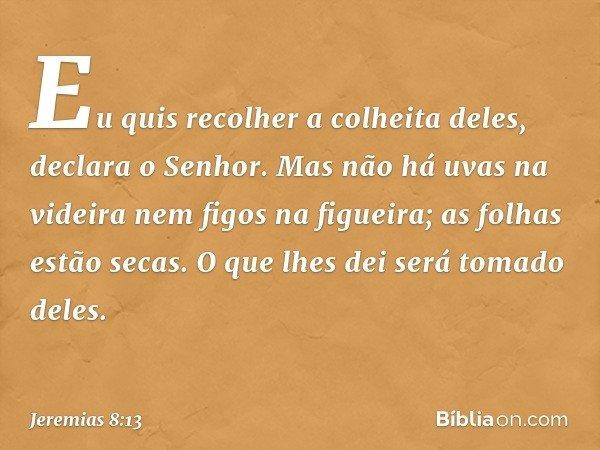 """""""Eu quis recolher a colheita deles"""", declara o Senhor. """"Mas não há uvas na videira nem figos na figueira; as folhas estão secas. O que lhes dei será tomado dele"""