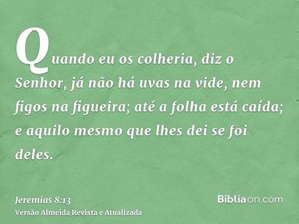 Quando eu os colheria, diz o Senhor, já não há uvas na vide, nem figos na figueira; até a folha está caída; e aquilo mesmo que lhes dei se foi deles.
