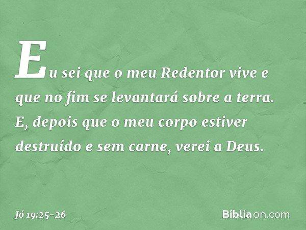 Eu sei que o meu Redentor vive e que no fim se levantará sobre a terra. E, depois que o meu corpo estiver destruído e sem carne, verei a Deus. -- Jó 19:25-26