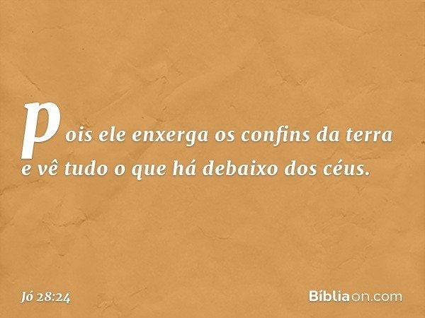 pois ele enxerga os confins da terra e vê tudo o que há debaixo dos céus. -- Jó 28:24