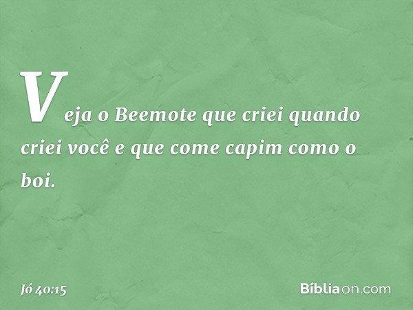 """""""Veja o Beemote que criei quando criei você e que come capim como o boi. -- Jó 40:15"""
