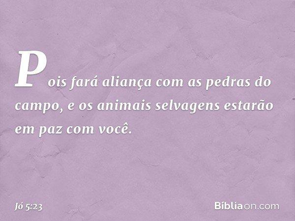 Pois fará aliança com as pedras do campo, e os animais selvagens estarão em paz com você. -- Jó 5:23