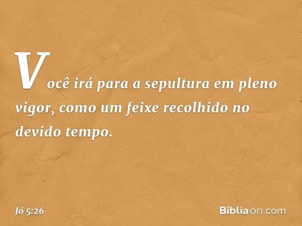 Você irá para a sepultura em pleno vigor, como um feixe recolhido no devido tempo. -- Jó 5:26