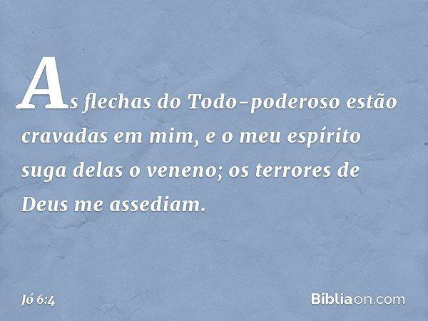 As flechas do Todo-poderoso estão cravadas em mim, e o meu espírito suga delas o veneno; os terrores de Deus me assediam. -- Jó 6:4