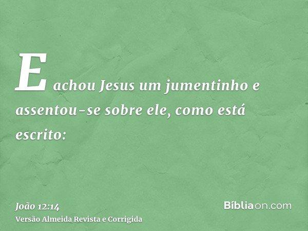 E achou Jesus um jumentinho e assentou-se sobre ele, como está escrito: