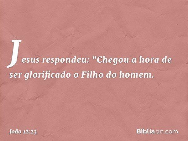 """Jesus respondeu: """"Chegou a hora de ser glorificado o Filho do homem. -- João 12:23"""
