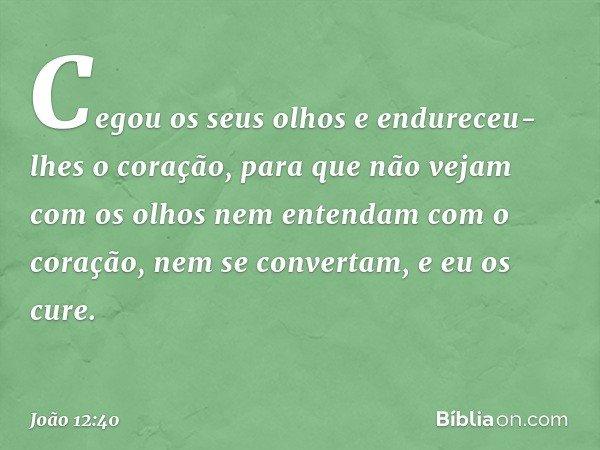 """""""Cegou os seus olhos e endureceu-lhes o coração, para que não vejam com os olhos nem entendam com o coração, nem se convertam, e eu os cure"""". -- João 12:40"""