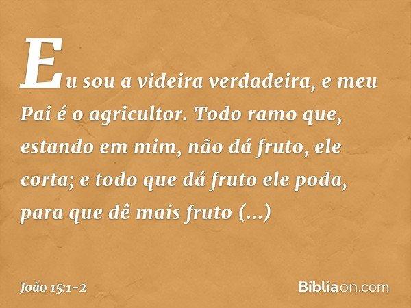 """""""Eu sou a videira verdadeira, e meu Pai é o agricultor. Todo ramo que, estando em mim, não dá fruto, ele corta; e todo que dá fruto ele poda, para que dê mais f"""