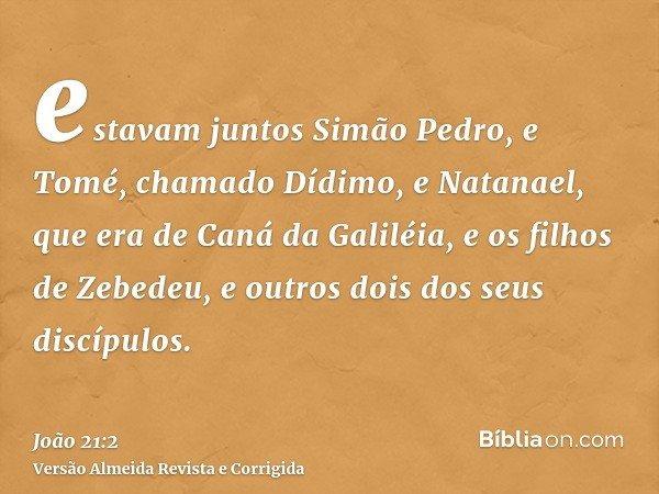 estavam juntos Simão Pedro, e Tomé, chamado Dídimo, e Natanael, que era de Caná da Galiléia, e os filhos de Zebedeu, e outros dois dos seus discípulos.