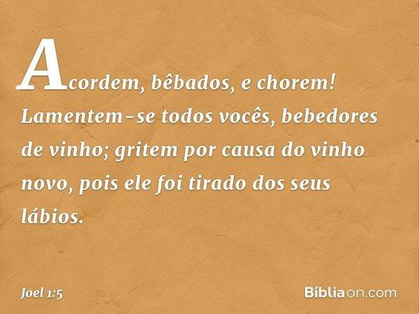 """""""Acordem, bêbados, e chorem! Lamentem-se todos vocês, bebedores de vinho; gritem por causa do vinho novo, pois ele foi tirado dos seus lábios. -- Joel 1:5"""