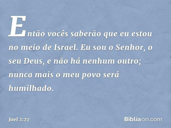 Então vocês saberão que eu estou no meio de Israel. Eu sou o Senhor, o seu Deus, e não há nenhum outro; nunca mais o meu povo será humilhado. -- Joel 2:27
