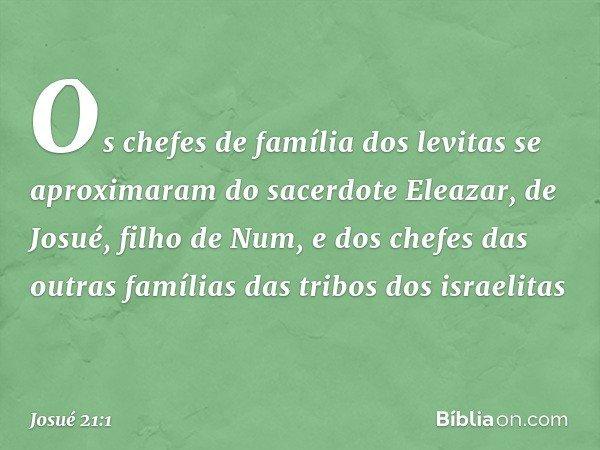 Os chefes de família dos levitas se aproximaram do sacerdote Eleazar, de Josué, filho de Num, e dos chefes das outras famílias das tribos dos israelitas -- Josu