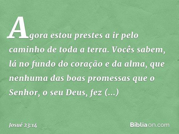 """""""Agora estou prestes a ir pelo caminho de toda a terra. Vocês sabem, lá no fundo do coração e da alma, que nenhuma das boas promessas que o Senhor, o seu Deus,"""